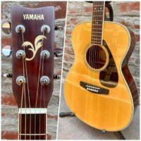 Yamaha FS-325 w/gig bag - $395