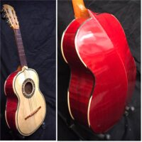Vihuela w/gig bag & chord book - $295