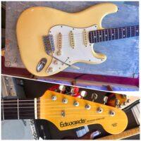 2005 Edwards E-SE-93R Fender re-issue '65 pickups w/gig bag - $795